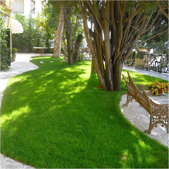 Gardens, Parks Creation